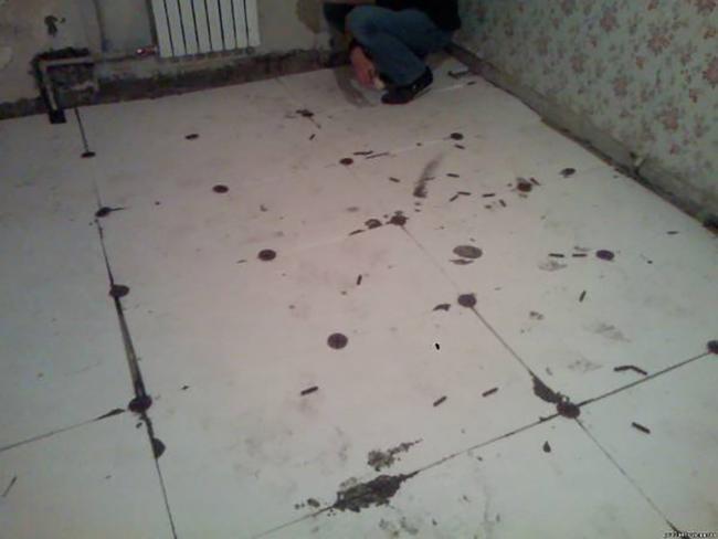 Прошу вас принять меры по ремонту крыши